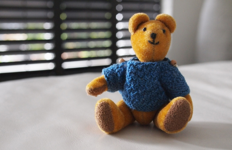 Orange teddy bear wearing blue jumer